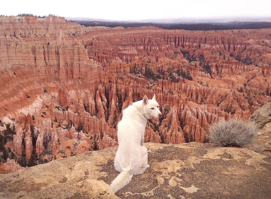 wolf-dog-adventures-travel-photography-john-stortz-14