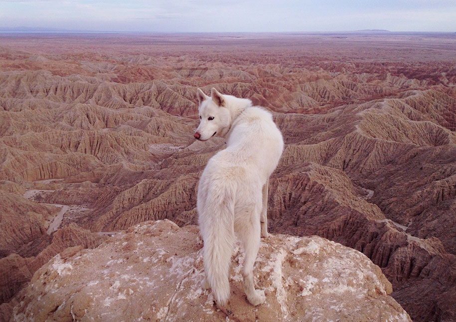 wolf-dog-adventures-travel-photography-john-stortz-16