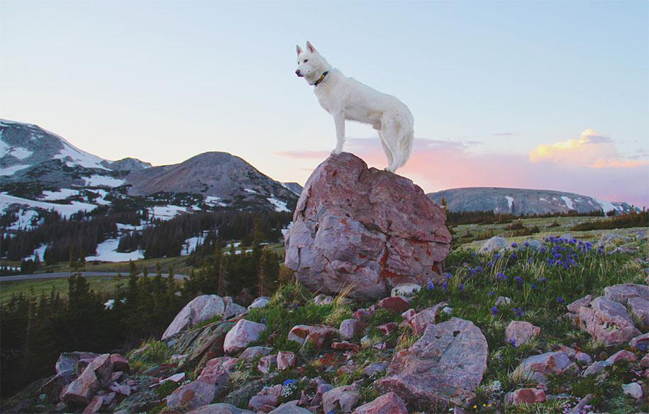 wolf-dog-adventures-travel-photography-john-stortz-19