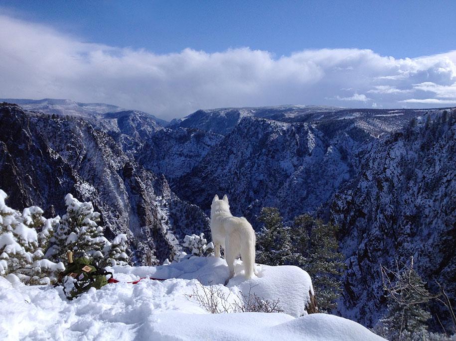 wolf-dog-adventures-travel-photography-john-stortz-20
