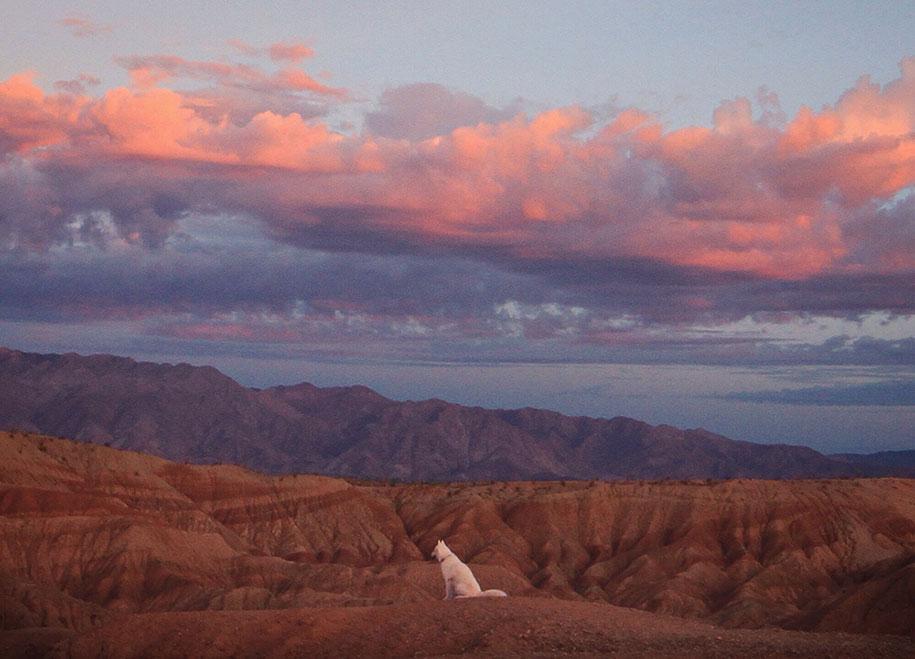 wolf-dog-adventures-travel-photography-john-stortz-22