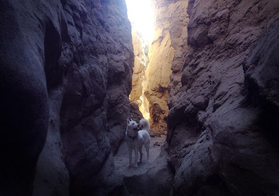 wolf-dog-adventures-travel-photography-john-stortz-23