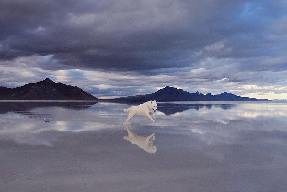 wolf-dog-adventures-travel-photography-john-stortz-25