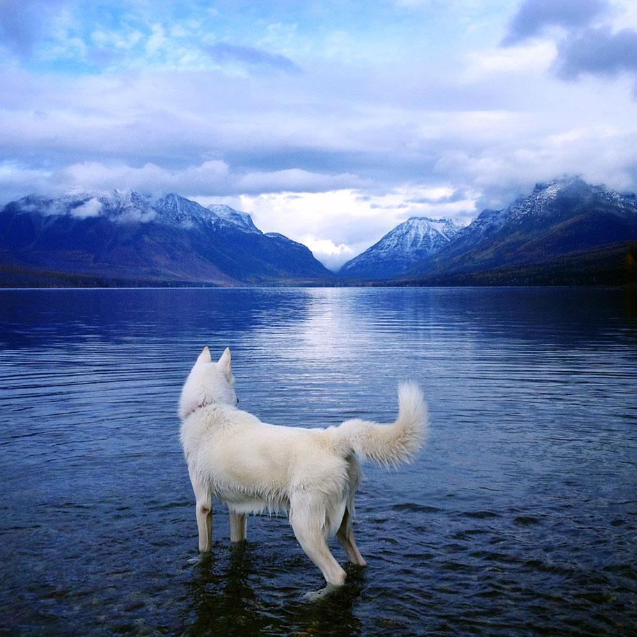 wolf-dog-adventures-travel-photography-john-stortz-26