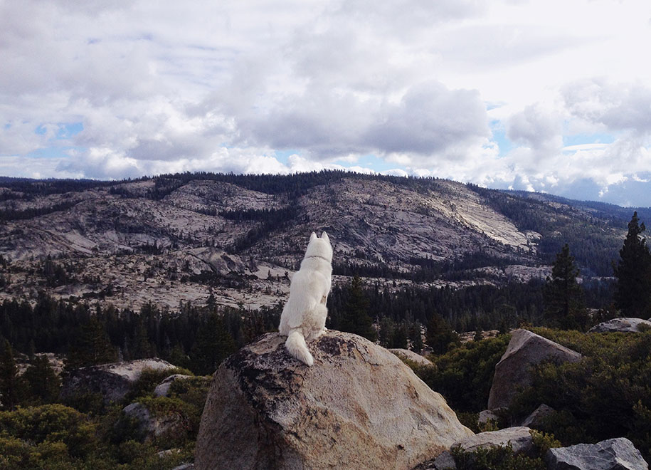 wolf-dog-adventures-travel-photography-john-stortz-5