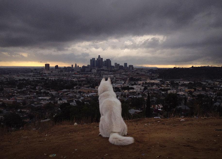 wolf-dog-adventures-travel-photography-john-stortz-6