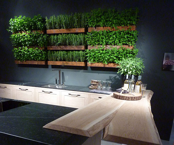 plants-green-interior-design-ideas-14