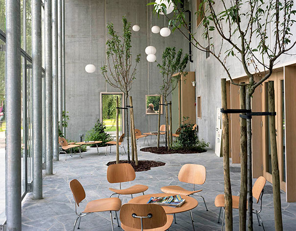 Plants Green Interior Design Ideas 17