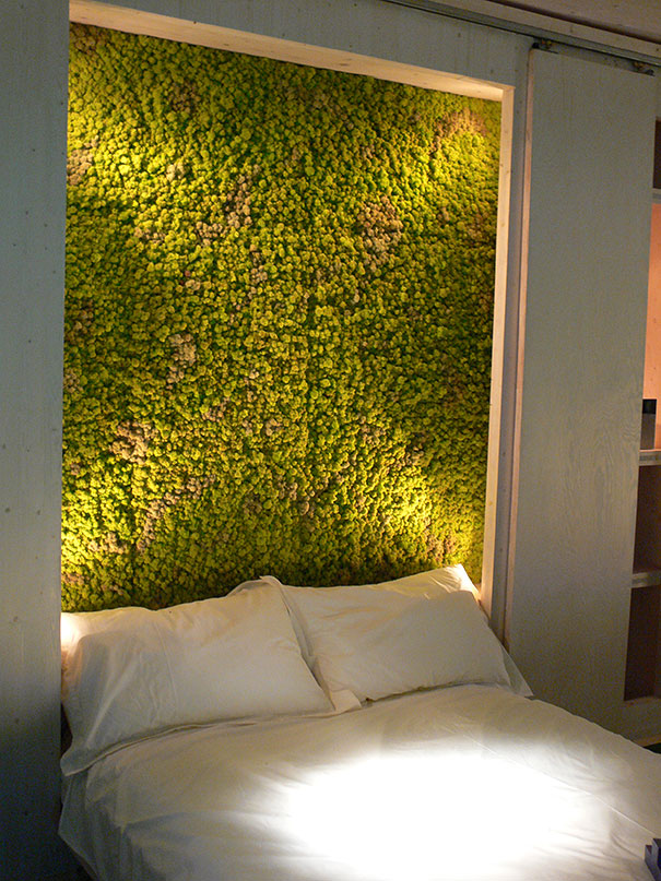 plants-green-interior-design-ideas-22