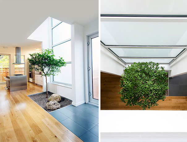 plants-green-interior-design-ideas-27