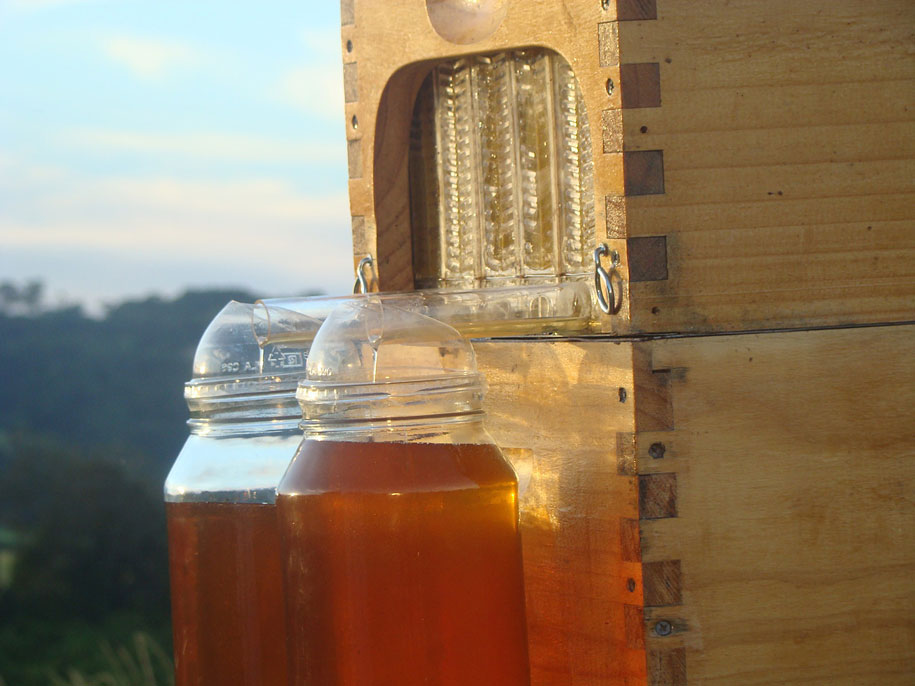 bees-easy-honey-tap-flow-hive-stuart-cedar-anderson-2