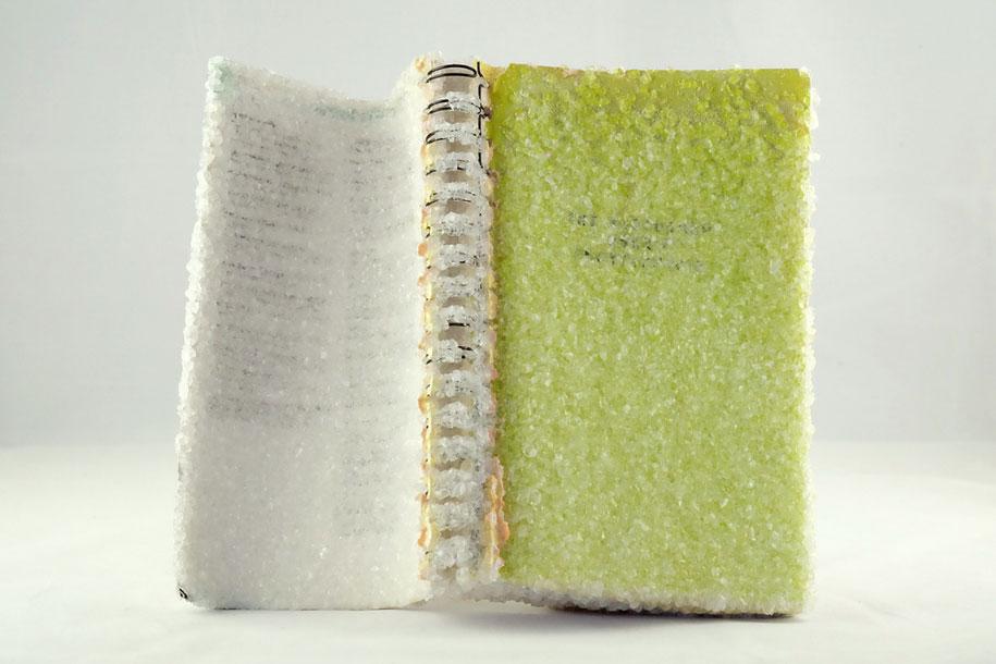 crystal-art-crystallized-book-alexis-arnold-10