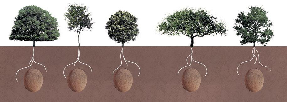 sacred-memory-forest-biodegradable-burial-pod-capsula-mundi-5