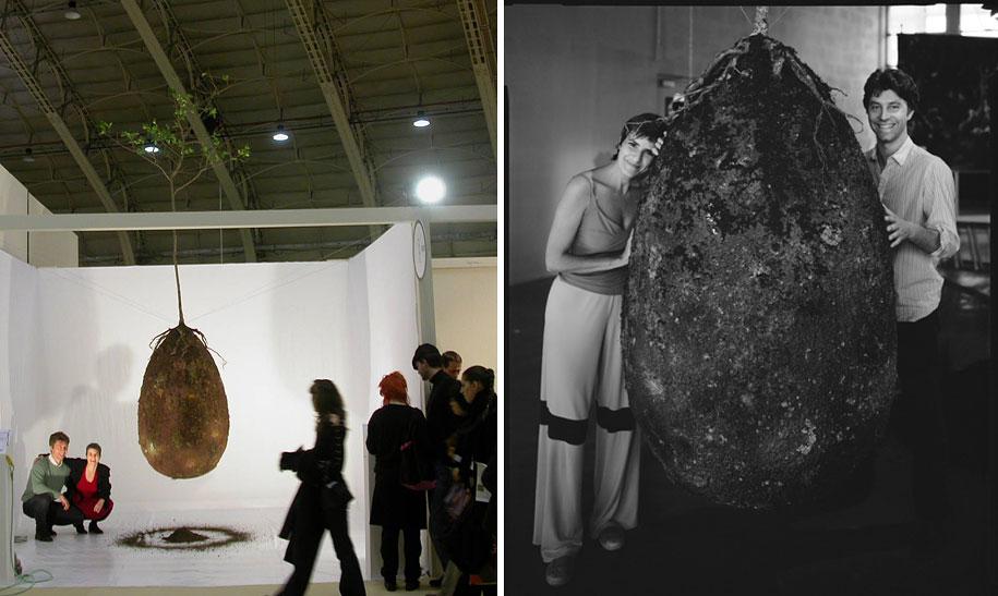 sacred-memory-forest-biodegradable-burial-pod-capsula-mundi-9