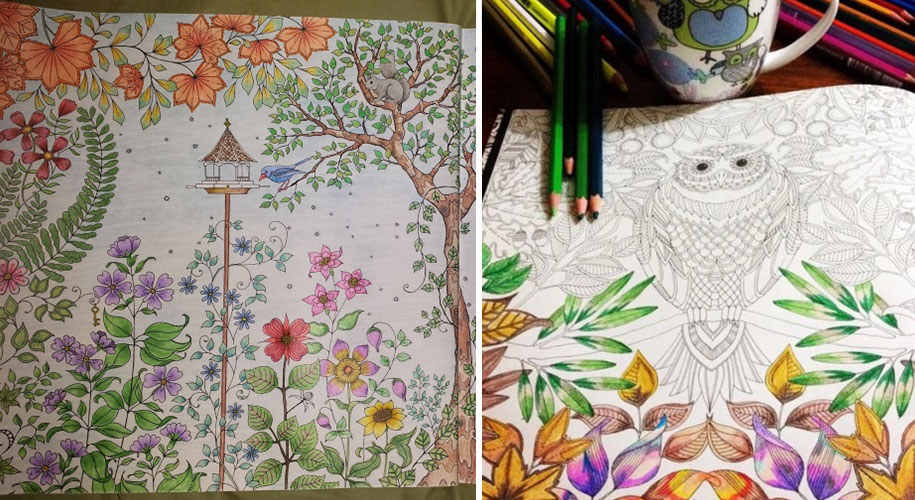 Coloring Books Adults Johanna Basford 14