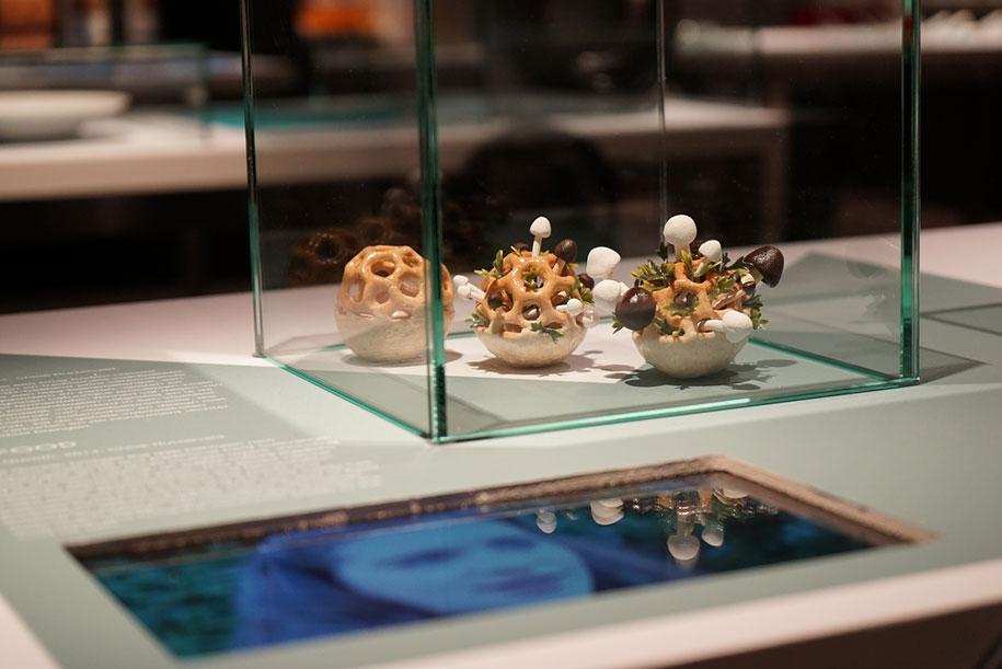 concept-design-3d-printed-food-edible-growth-chloe-rutzerveld-2