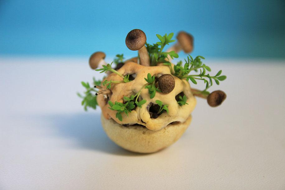concept-design-3d-printed-food-edible-growth-chloe-rutzerveld-5