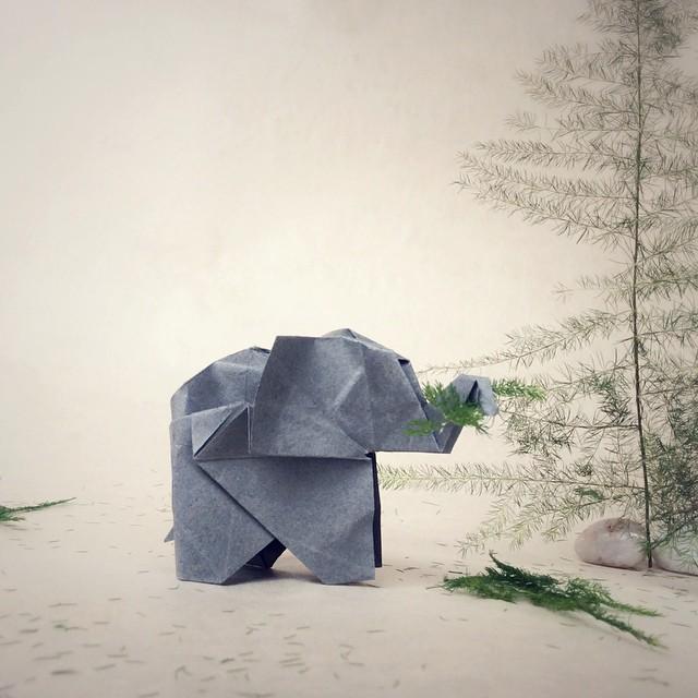 creative-origami-animal-scenes-wenlise-fold-wenche-lise-fossland-08
