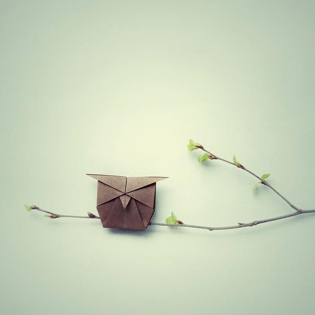 creative-origami-animal-scenes-wenlise-fold-wenche-lise-fossland-53