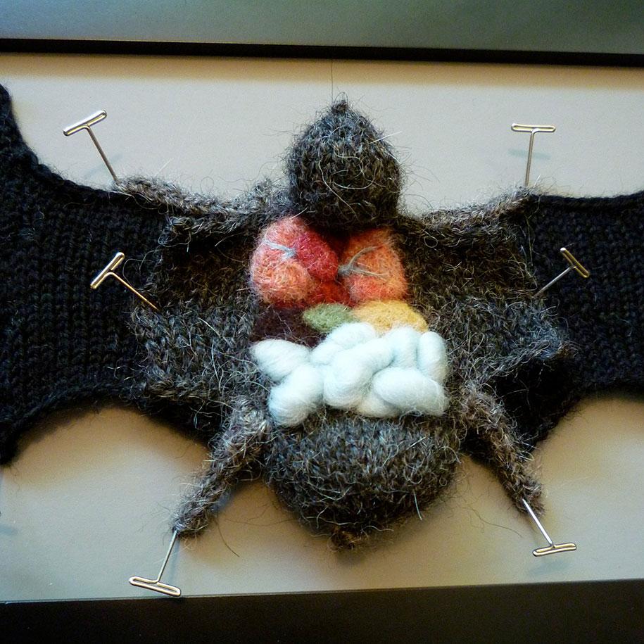 knit-animal-dissection-aknitomy-emily-stoneking-12