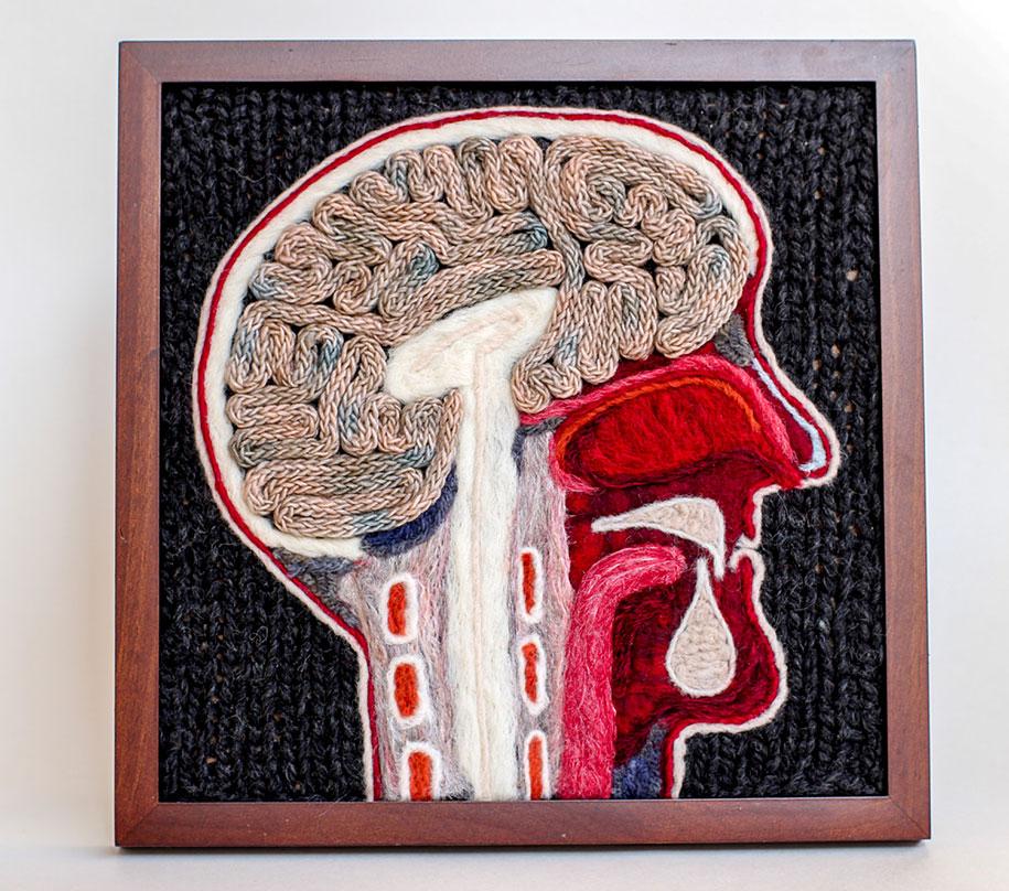 knit-animal-dissection-aknitomy-emily-stoneking-14