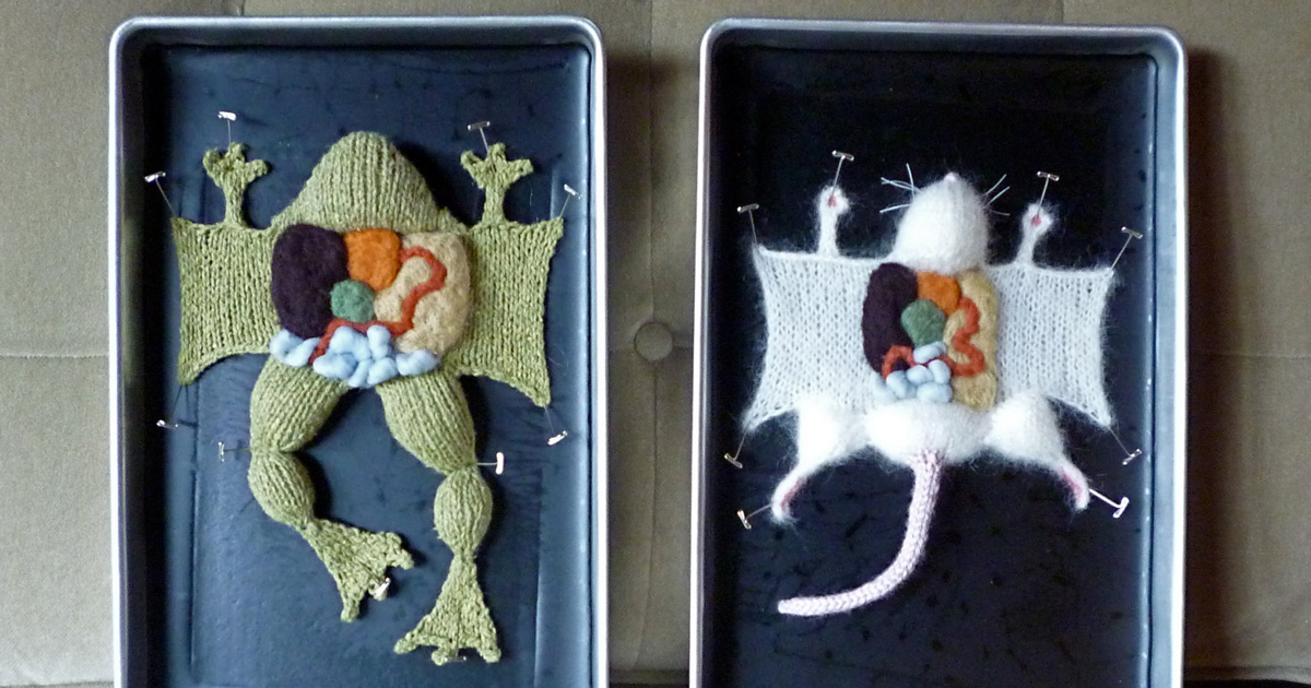 Learn Anatomy From Knitted Creatures Without Harming Anything