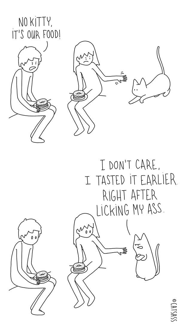 mean-cat-comic-strip-catsass-claude-combacau-09