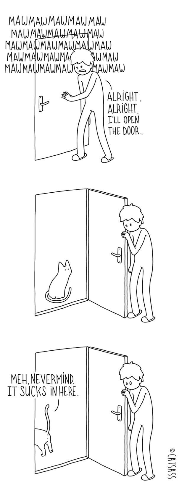 mean-cat-comic-strip-catsass-claude-combacau-12