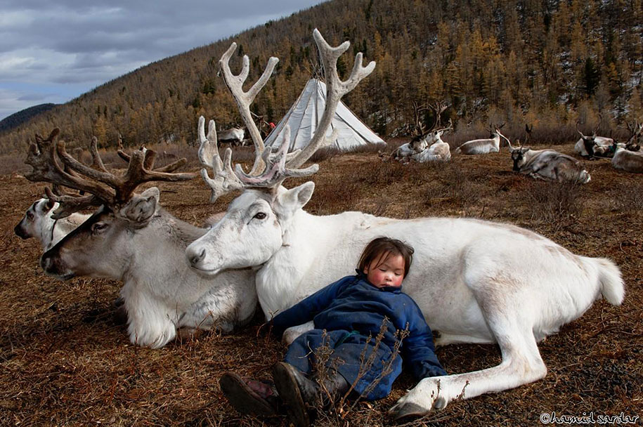 Travelling Through The Mongolian Wilderness Away From Technology ...
