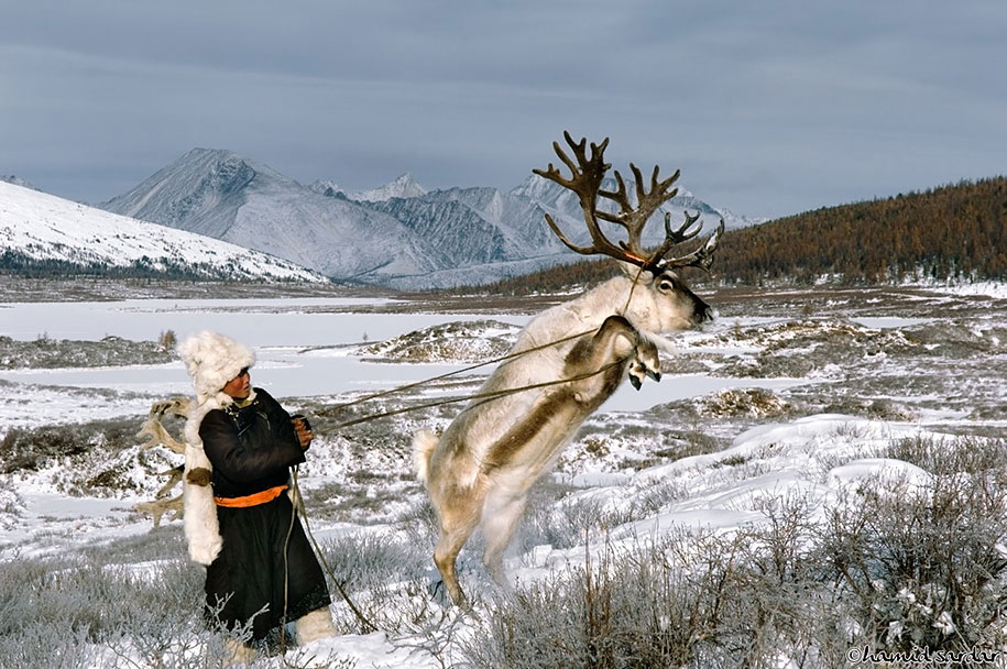 mongolia-tribe-reindeer-people-hamid-sardar-afkhami-8
