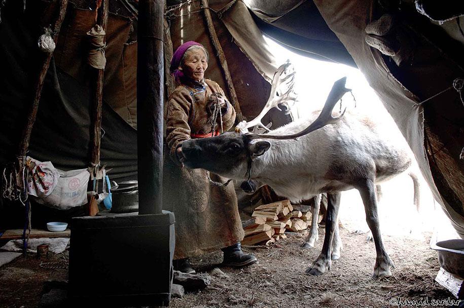 mongolia-tribe-reindeer-people-hamid-sardar-afkhami-9