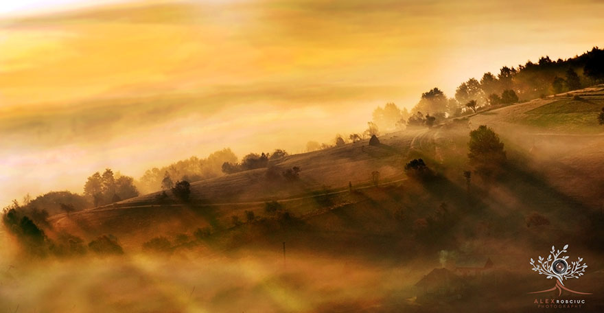 poze incredibile Transilvania 13
