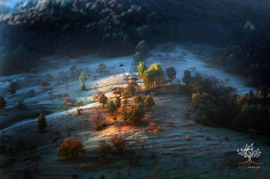 poze incredibile Transilvania 6