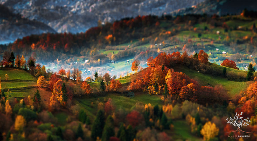 poze incredibile Transilvania
