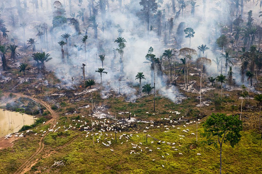 poluição-trash-destruição-overdevelopement-superpopulação-superação-10
