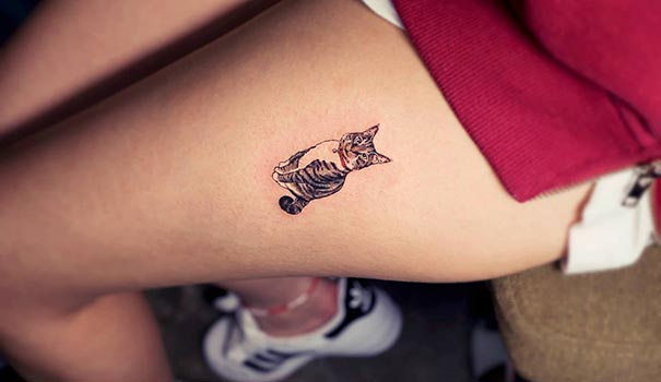 cat-tattoos-trend-illegal-parlors-south-korea-17