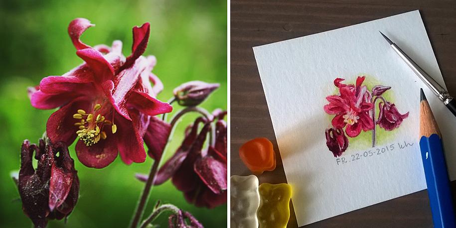 daily-instagram-inspired-art-drawings-tiny-spring-kasia-haldas-8