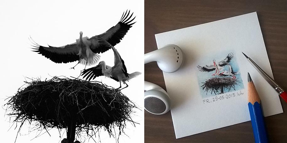 daily-instagram-inspired-art-drawings-tiny-spring-kasia-haldas-9