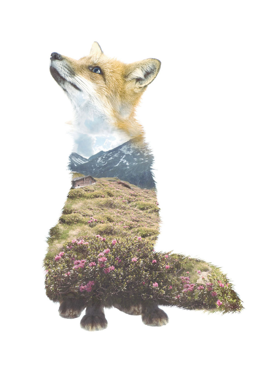double-exposure-animal-portraits-faunascapes-whatwedo-denmark-15