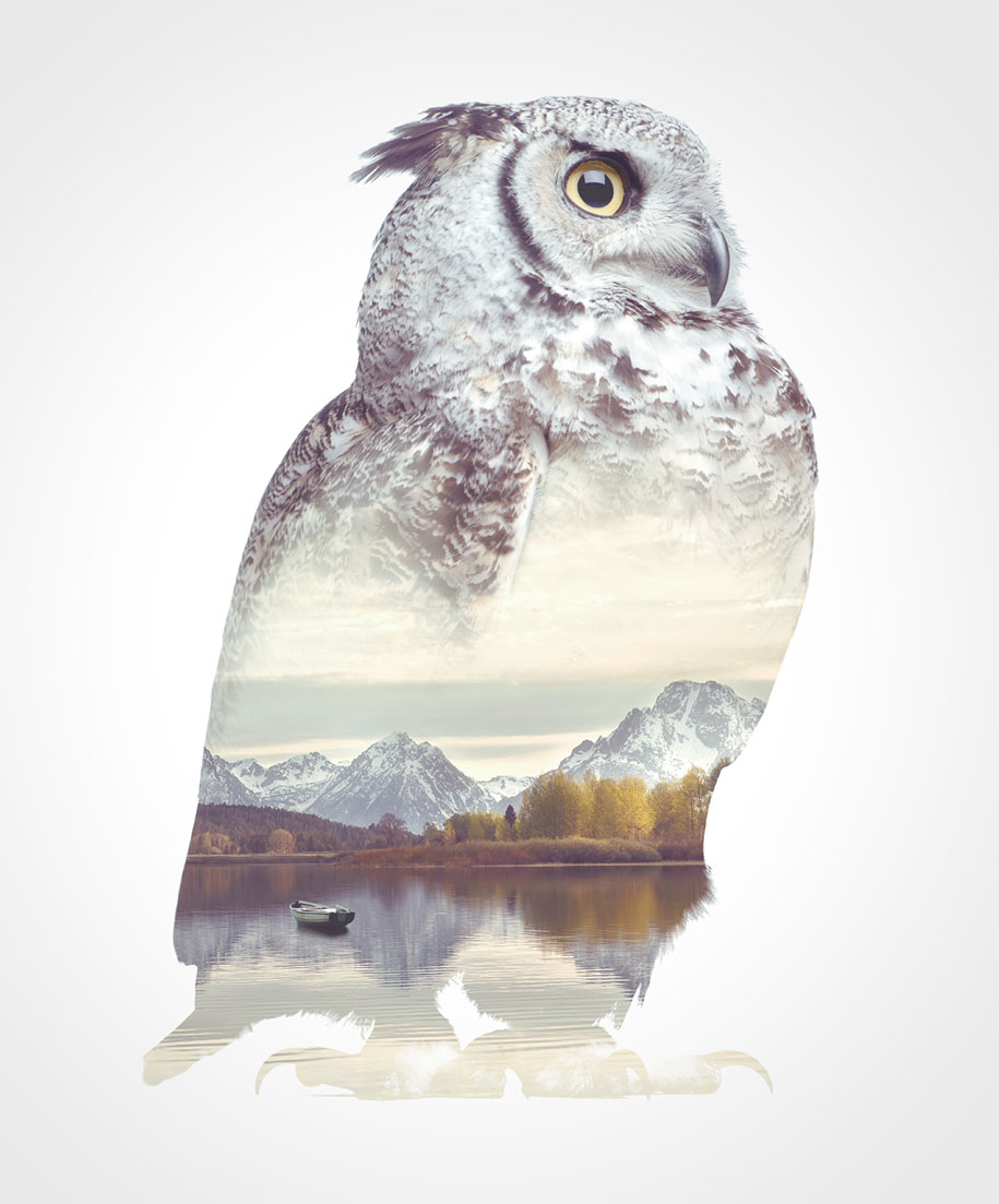 double-exposure-animal-portraits-faunascapes-whatwedo-denmark-9