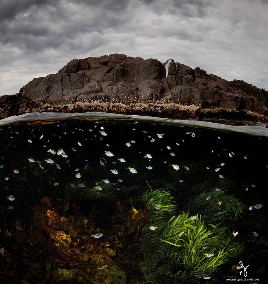surface-half-underwater-photography-over-under-matty-smith-7