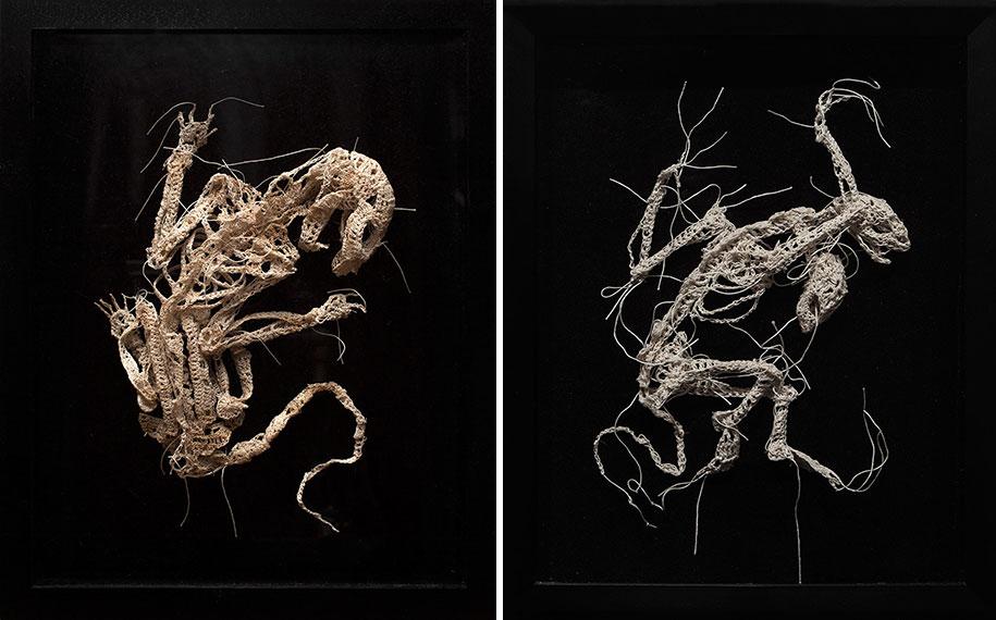disturbing-crocheted-yarn-glue-animal-skeletons-caitlin-mccormack-13