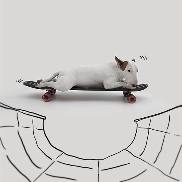 dog-interactive-illustrations-jimmy-choo-rafael-mantesso-10