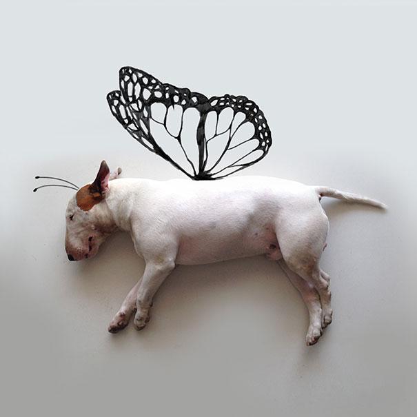 dog-interactive-illustrations-jimmy-choo-rafael-mantesso-19