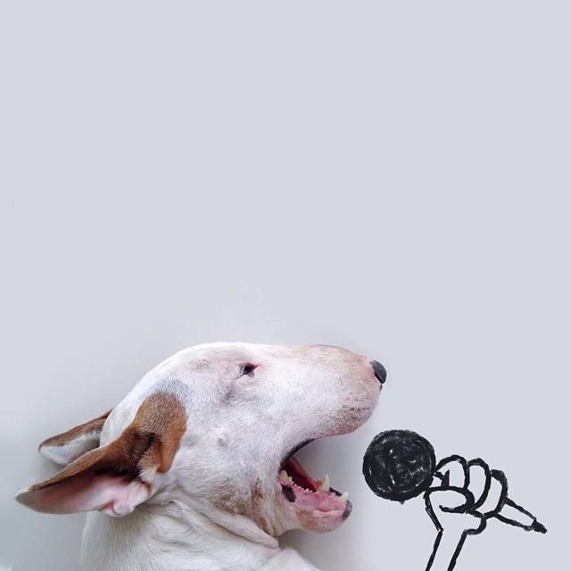 dog-interactive-illustrations-jimmy-choo-rafael-mantesso-24