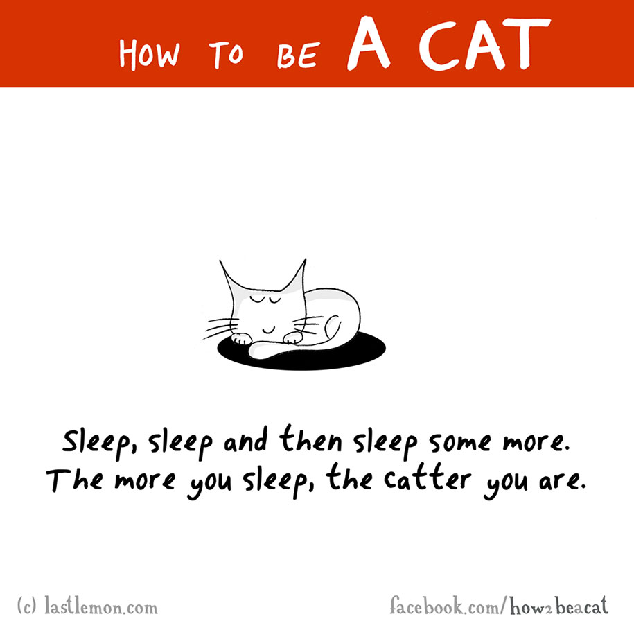 funny-illustration-guide-how-to-be-cat-lisa-swerling-ralph-lazar-4