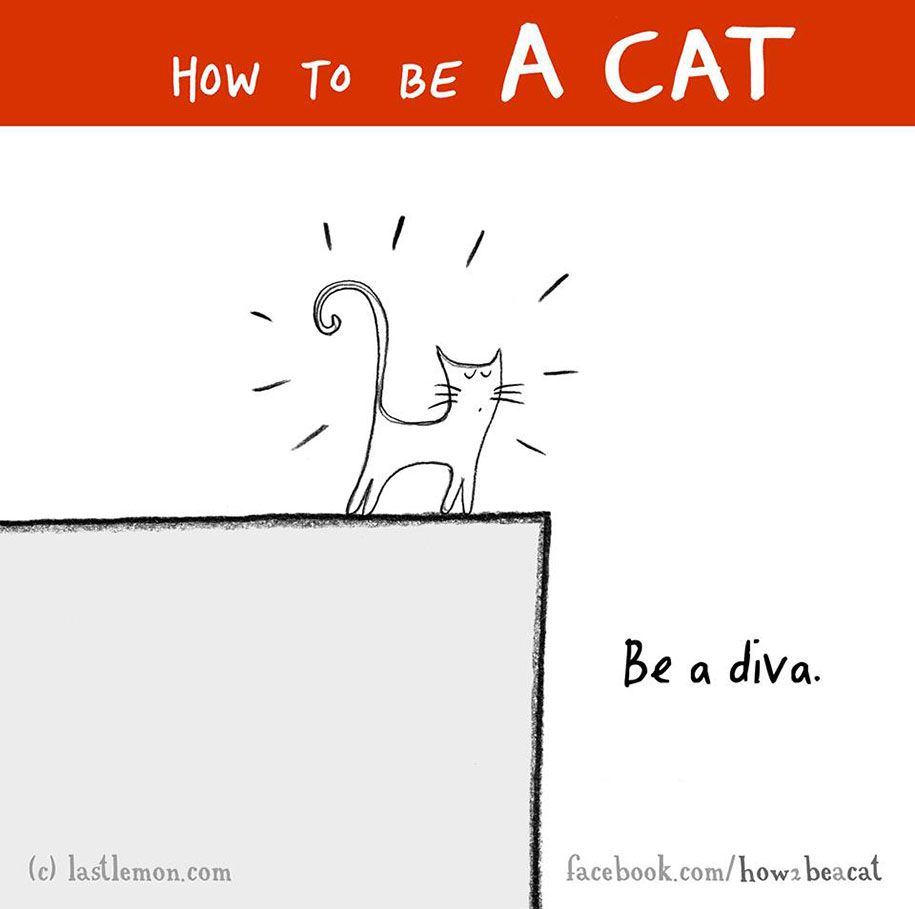 funny-illustration-guide-how-to-be-cat-lisa-swerling-ralph-lazar-46