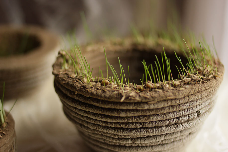 green-printer-soil-grass-garden-printgreen-university-maribor-slovenia-2