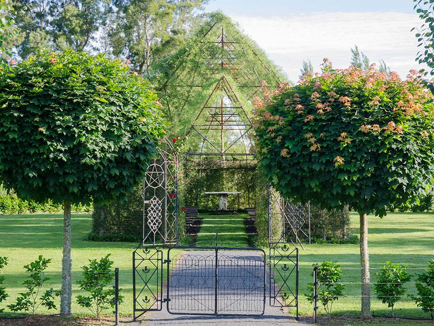 living-growing-instalation-tree-church-barry-cox-1