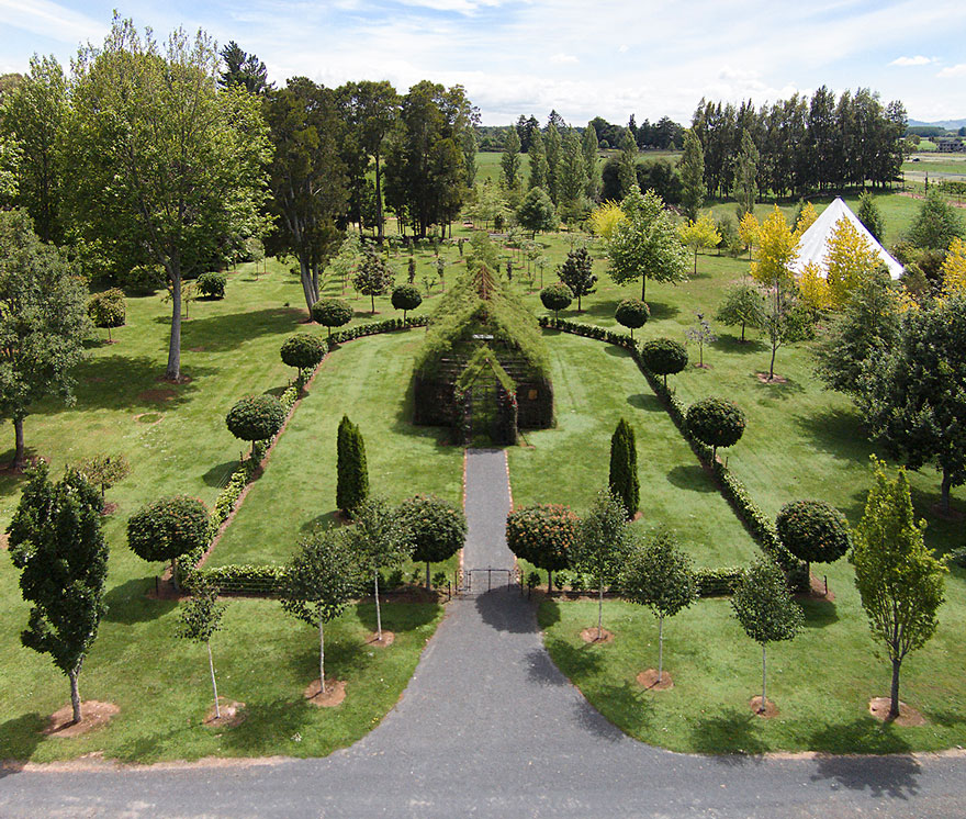living-growing-instalation-tree-church-barry-cox-5